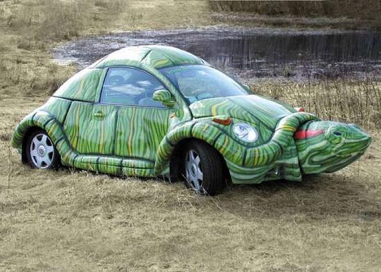 voiture tortue